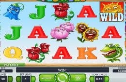 Jogar slot Flowers online grátis