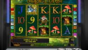 Online casino slot Magic Forest