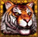 Jogo caça-níqueis online grátis  King Tiger