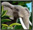 Imagem do jogo  caça-níqueis online  The Jungle II