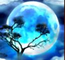 Disperso do caça-níqueis online Savanna Moon