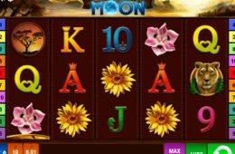 Foto do jogo de cassino online Savanna Moon