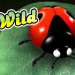 Símbolo curinga do caça-níqueis online grátis Wild Berry