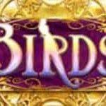 Símbolo curinga do jogo de cassino online Birds of Wonder