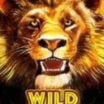 Símbolo curinga do jogo caça-níqueis grátis Hot Safari