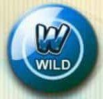 Símbolo curinga do caça-níqueis online Reely Bingo