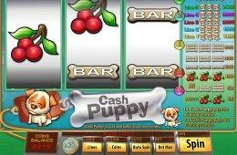 Jogo de cassino grátis Cash Puppy sem depósito
