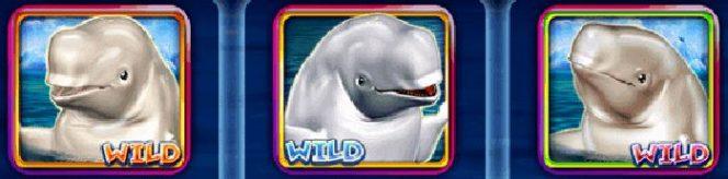 Curingas do caça-níqueis online Jolly Beluga Whales