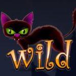 Símbolo de curinga do jogo grátis de casino Mad 4 Halloween